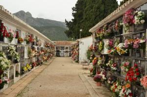 cemetery-1543543